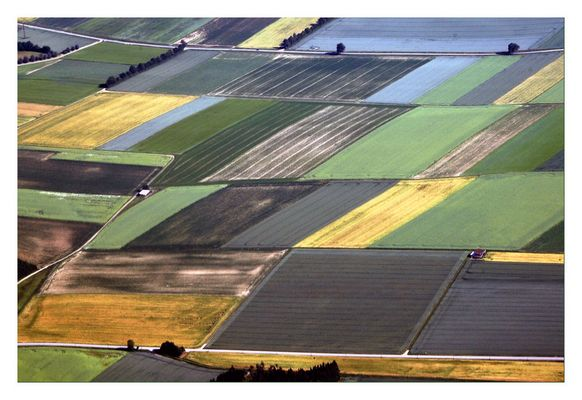 Field Art - Feldkunst