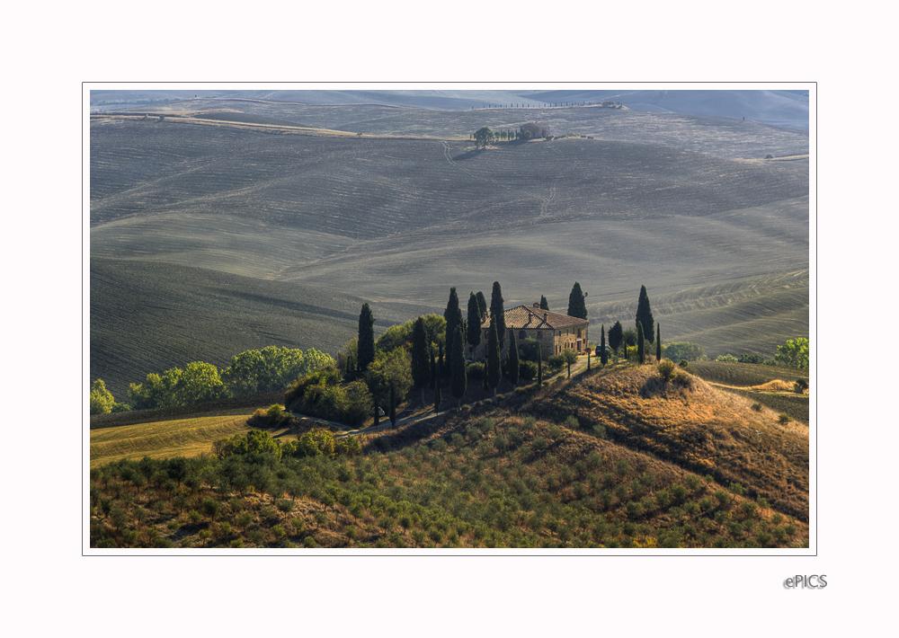fields of siena