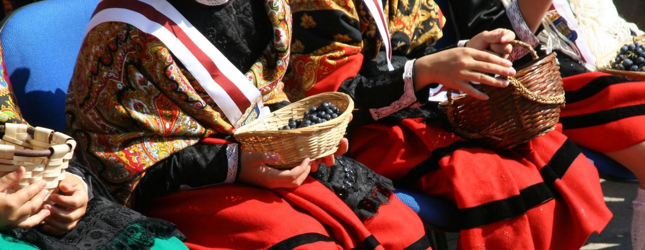 Fiestas de San Mateo en Logroño ( La Rioja), el día de la vendimia (21-09-2012)
