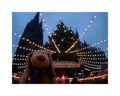 Fikki liebt Weihnachtsmärkte