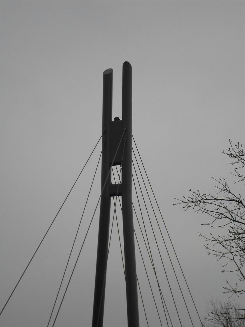 Filigranes an der Pieschner Molenbrücke