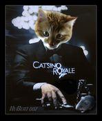 "Filmpremiere zu Ostern: Kater Hubert in ""CATSINO ROYALE 007"""