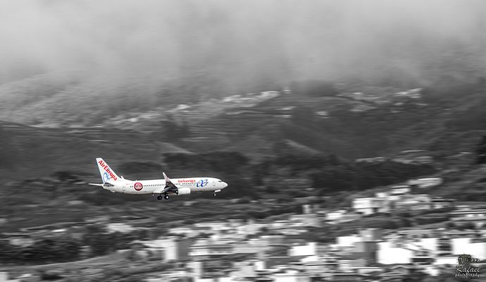 Final del vuelo (Afectuosamente a mi amiga Mayte Acedo)