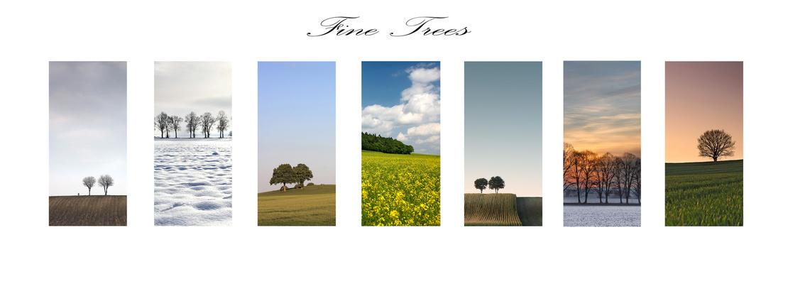 Fine Trees
