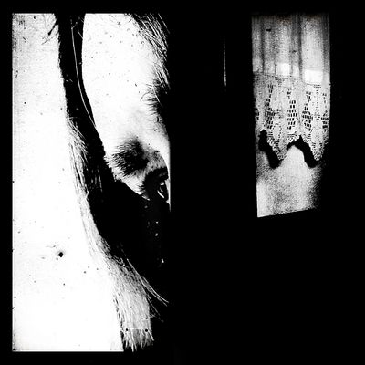 finestre d'ombra