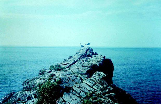Finistère (4)
