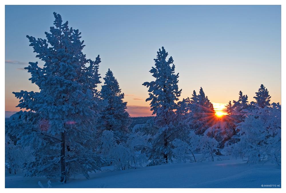 Finnisch Sunrise