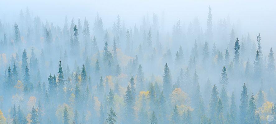 Finnischer Herbst ...