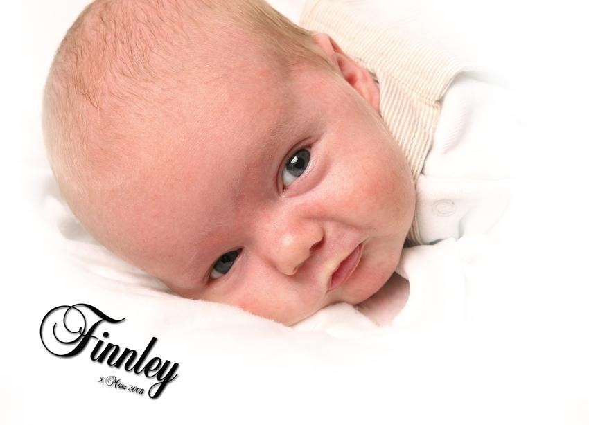 Finnley #2