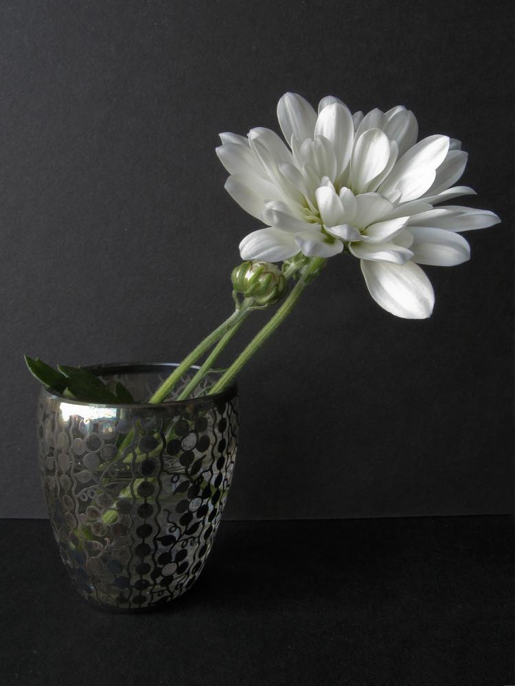 fiore in un bicchierino