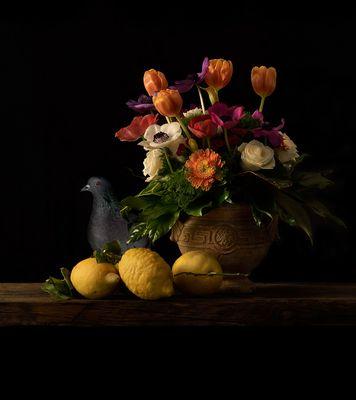 fiori e frutta con piccione curioso