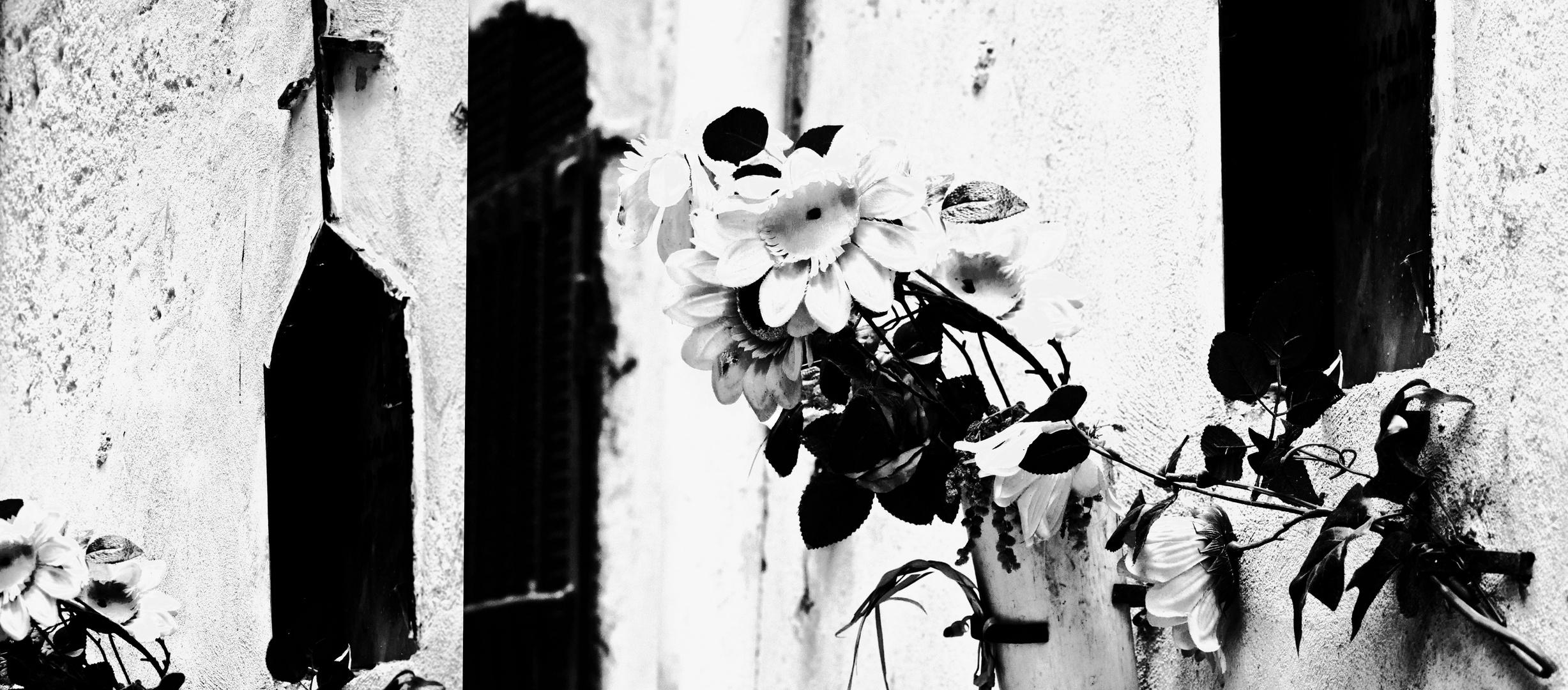 fiori ed edicole