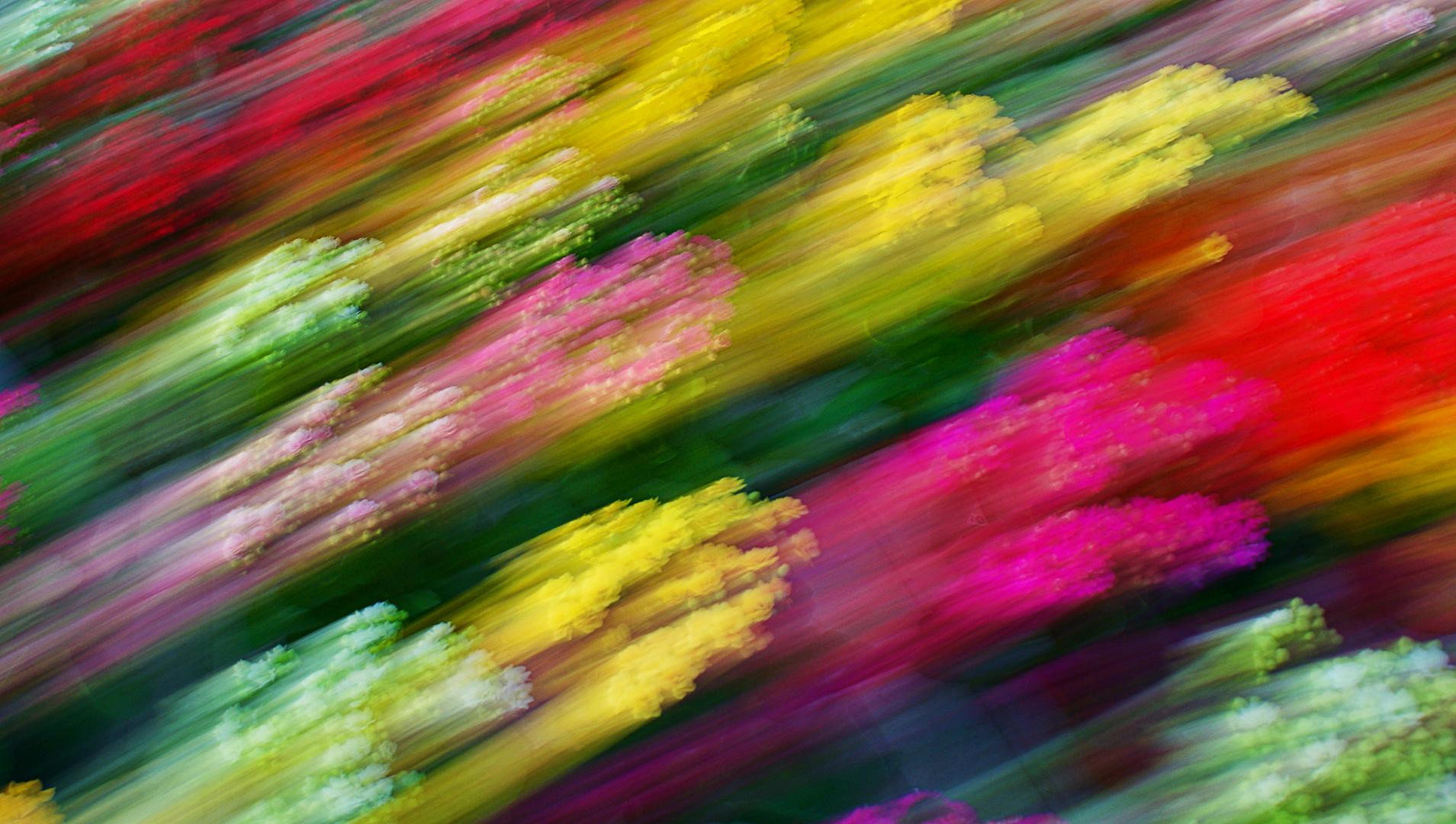 """fiori """"spaziali"""""""