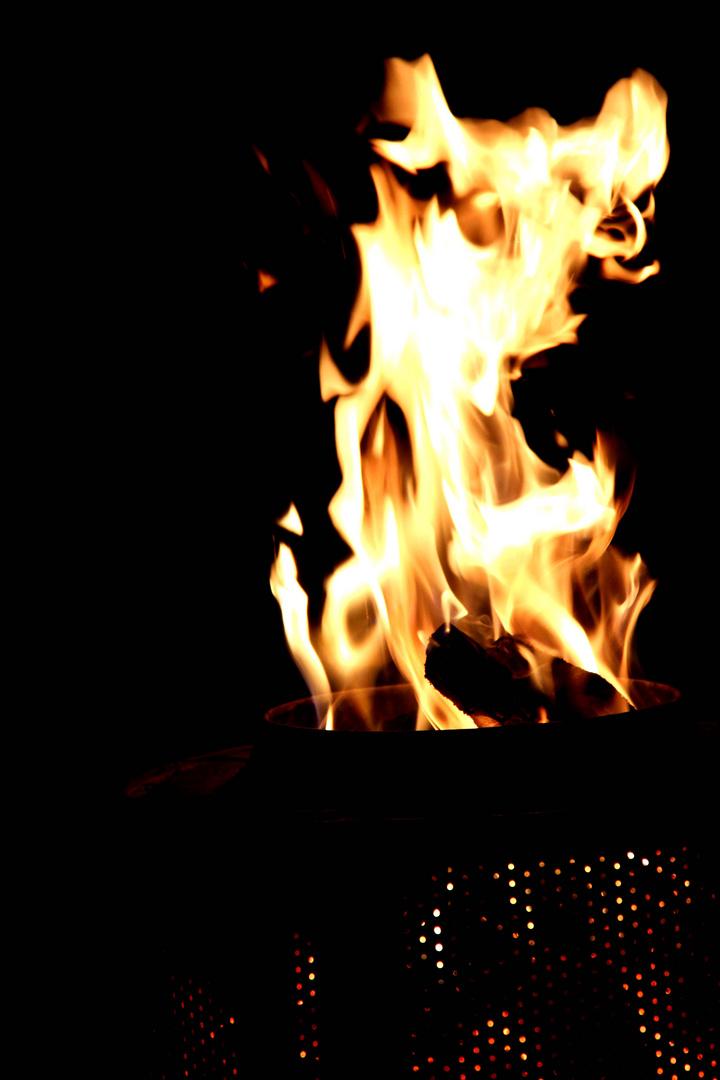 fire-animal