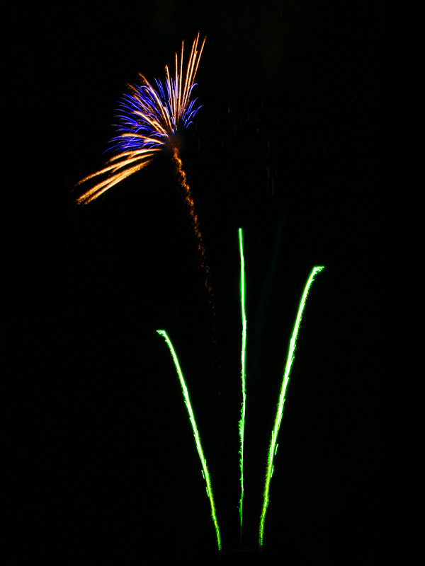 Fireworkflower