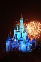 Fireworks at Disney castle - WDW