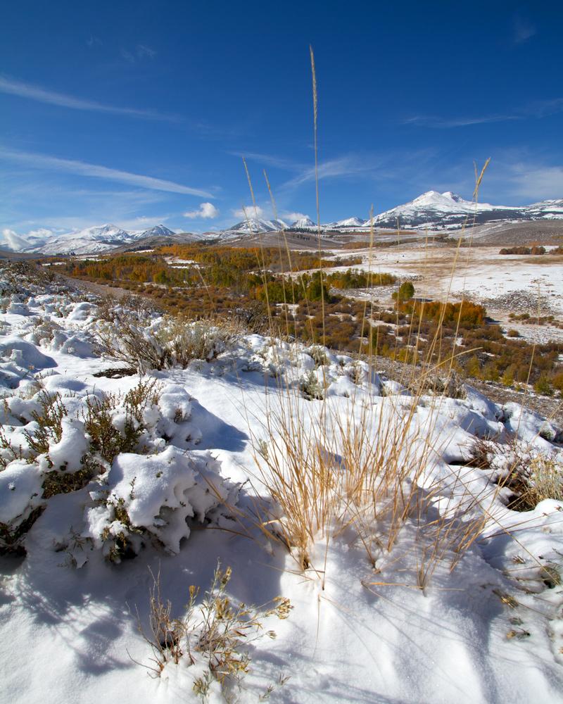 first sierra snow