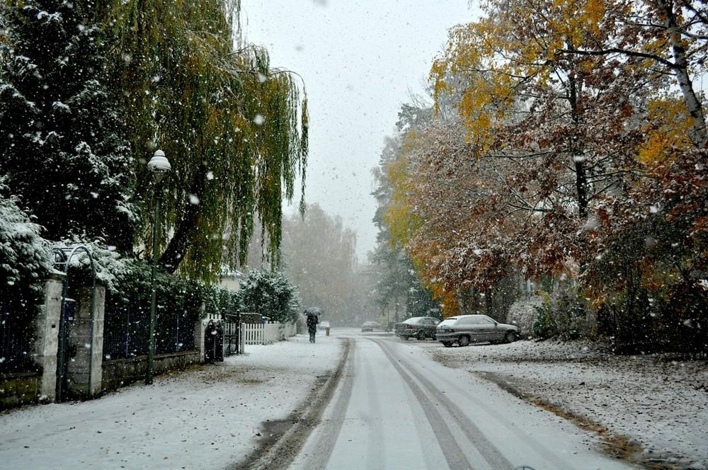 First Snow V