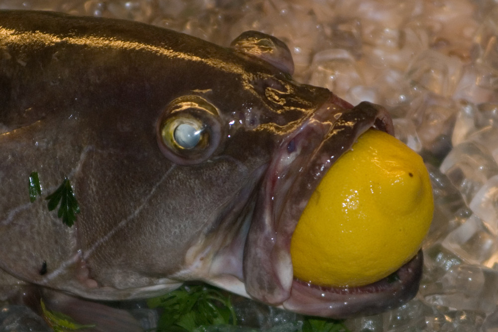 Fisch mit Zitrone