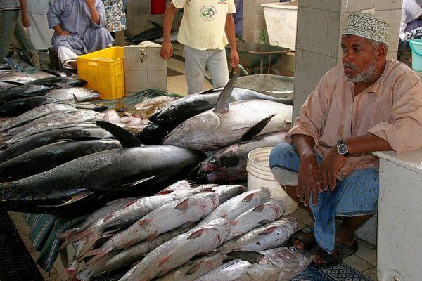 Fisch Souq