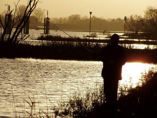 Fischen am Rein, Driel