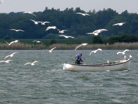 Fischer auf der Schlei bei Maasholm.