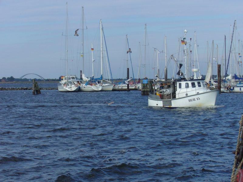 Fischer auf Fehmarn