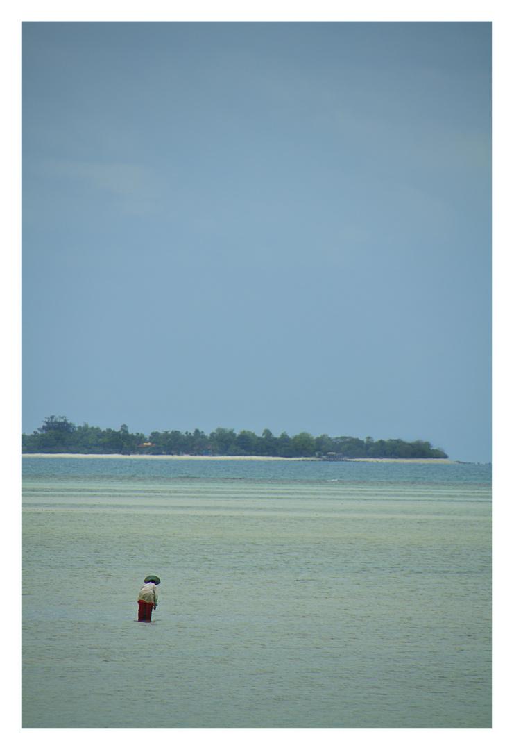 Fischer auf Koh Samui