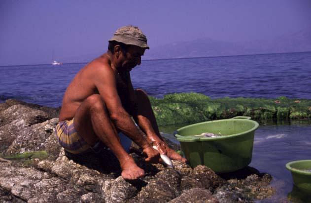 Fischer auf Mykonos