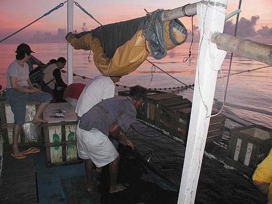 Fischer bei der Arbeit im Morgengrauen