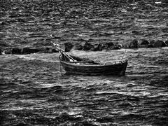 fischer-boot ...