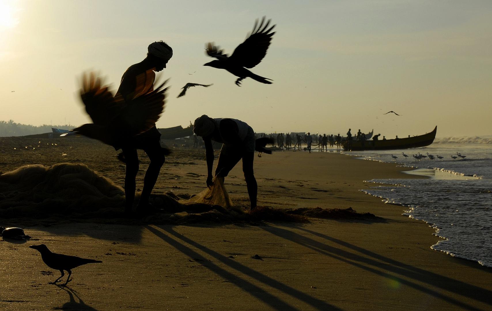 Fischer und Vögel