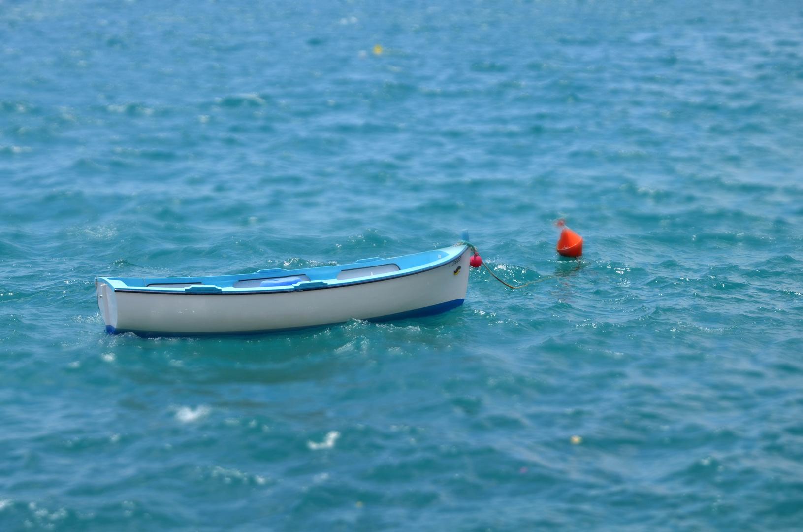Fischerboot en miniature...