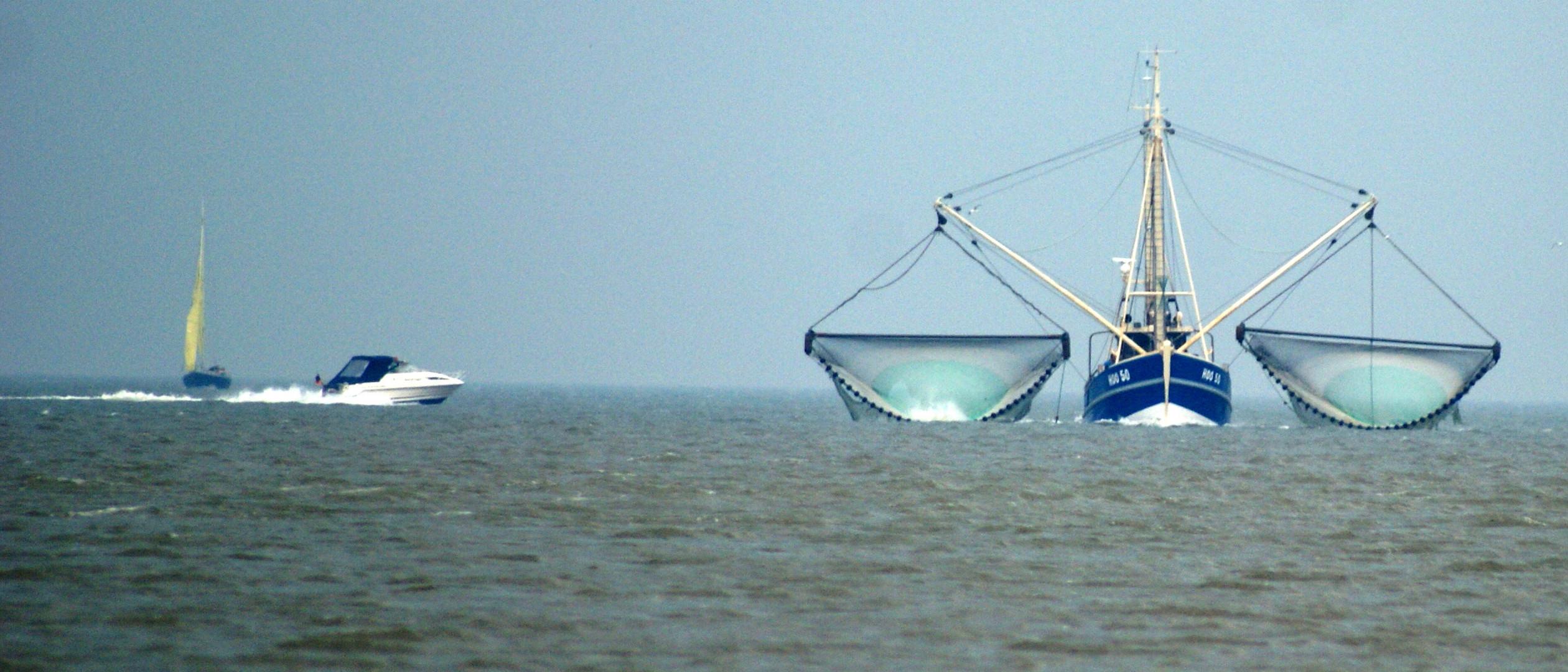 Fischerboot in Begleitung.