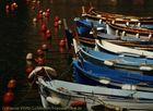Fischerboote - Cinque Terres
