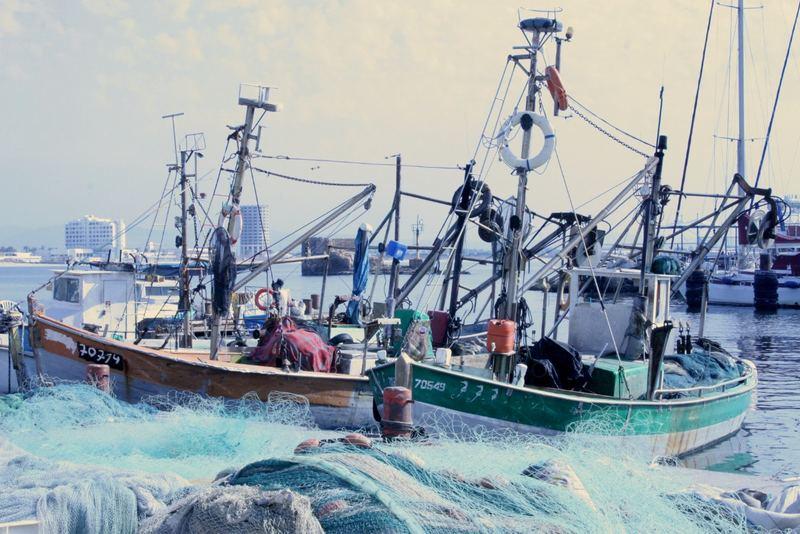 Fischerboote im Hafen von Akko