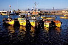 Fischerboote im Hafen von Caldera, Chile