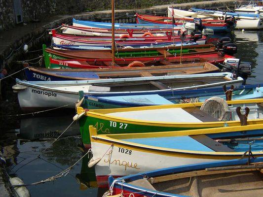 Fischerboote in Torri d. Benaco; Gardasee