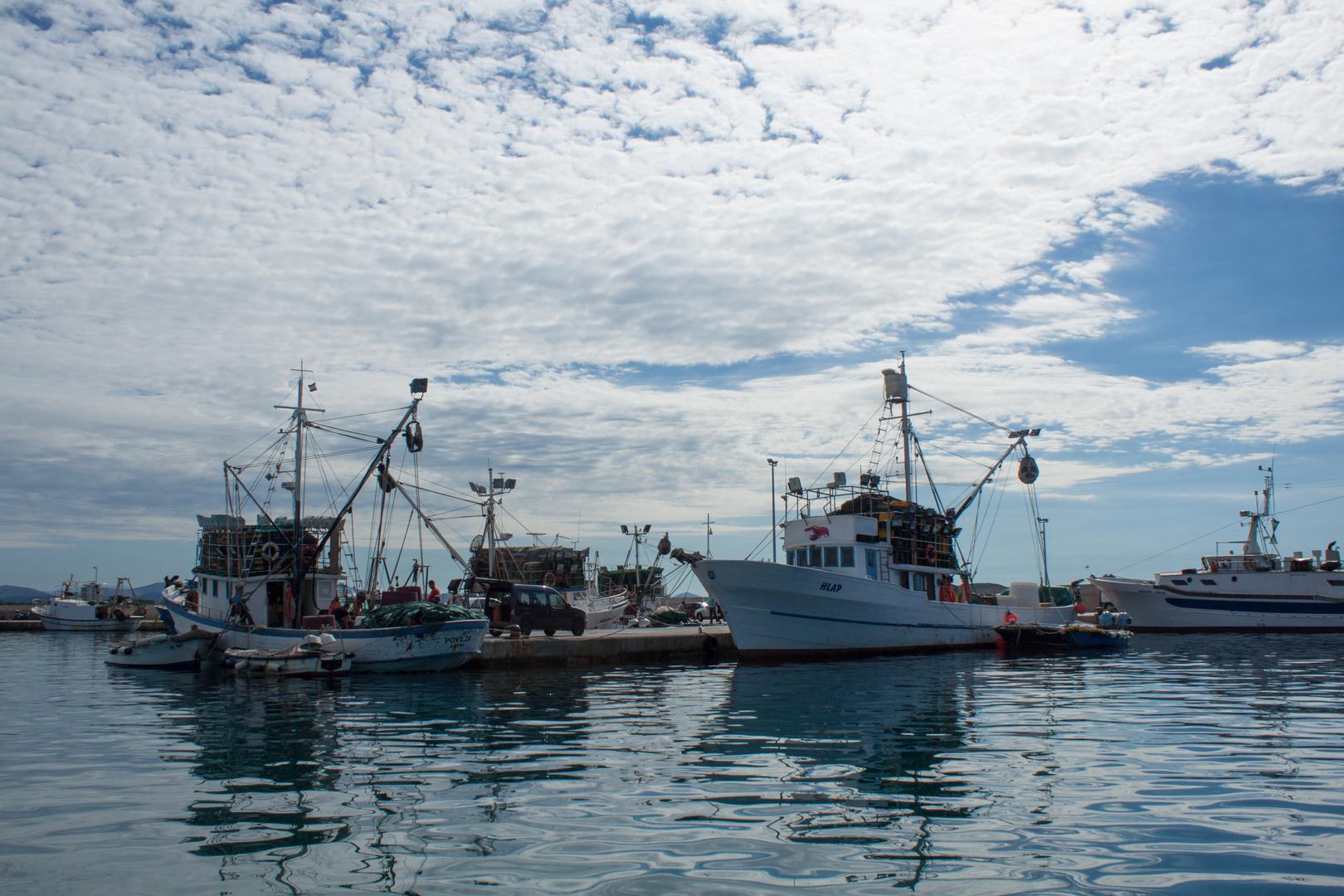 Fischerboote in Tribunj