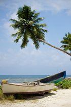 Fischerboote unter Palmen