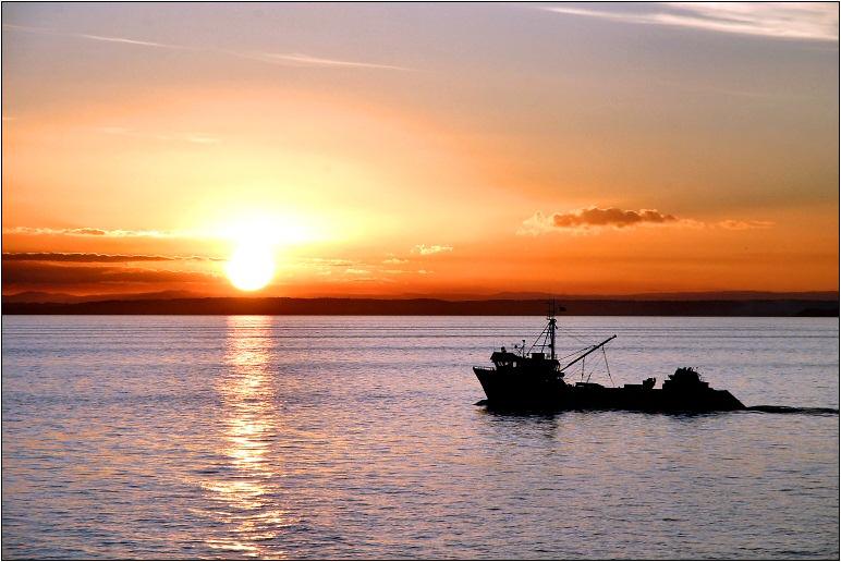 Fischerei kann auch schön sein...