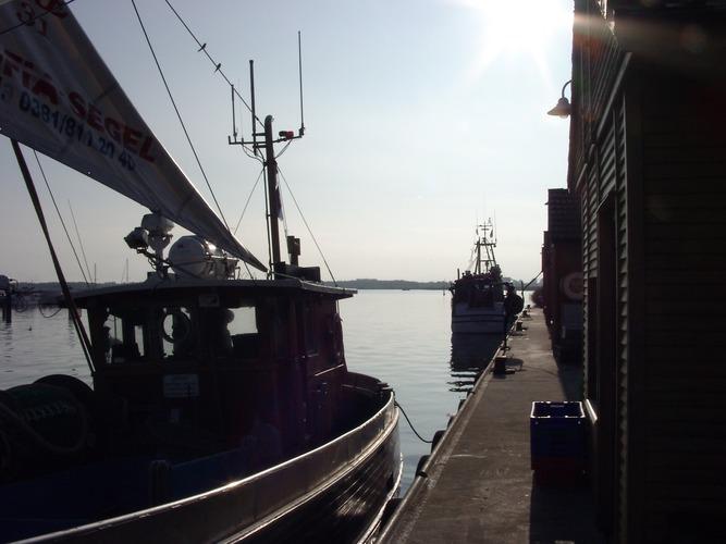 Fischereihafen Freest auf Usedom/8:00 Uhr/August 2004