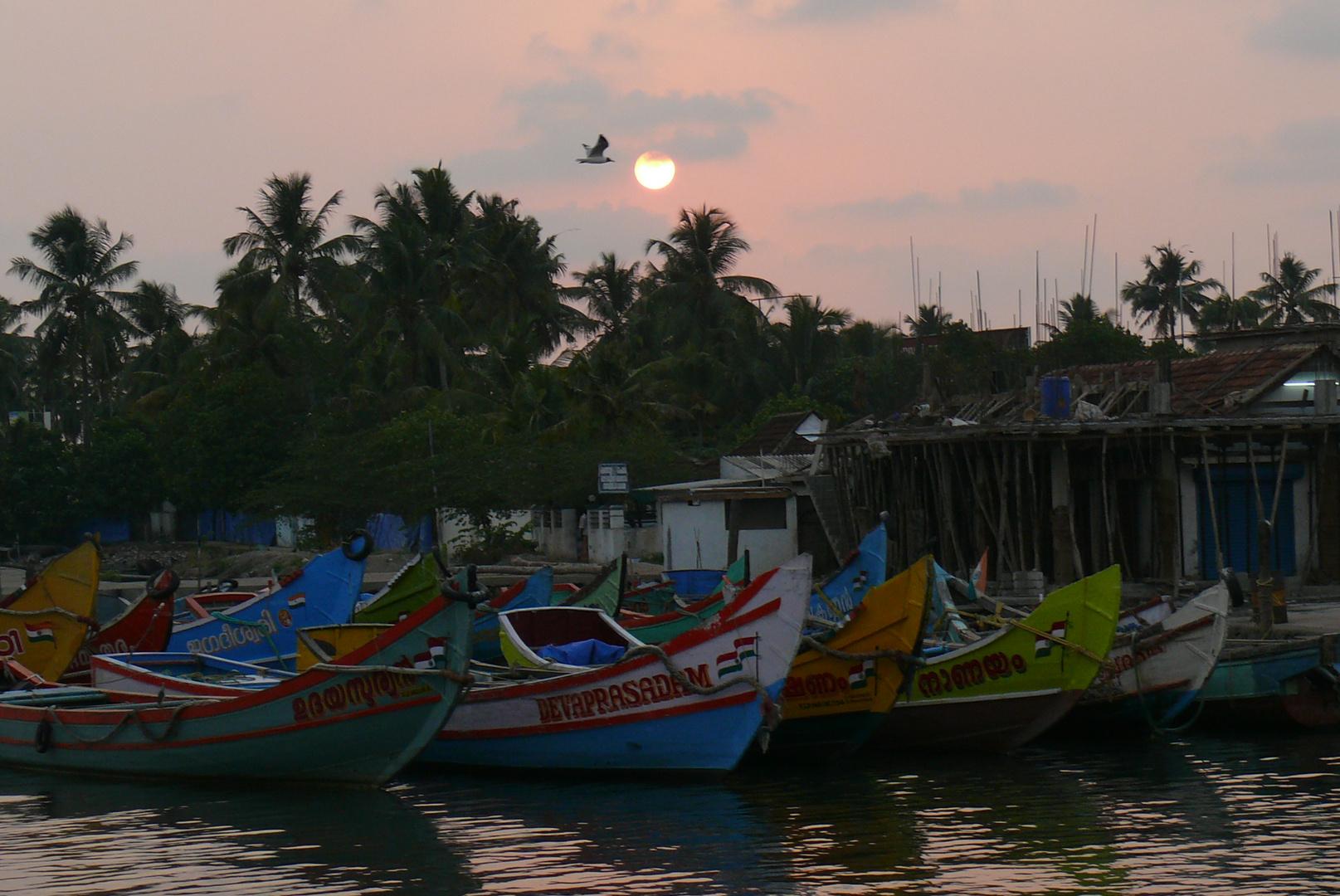Fischereihafen Kochi