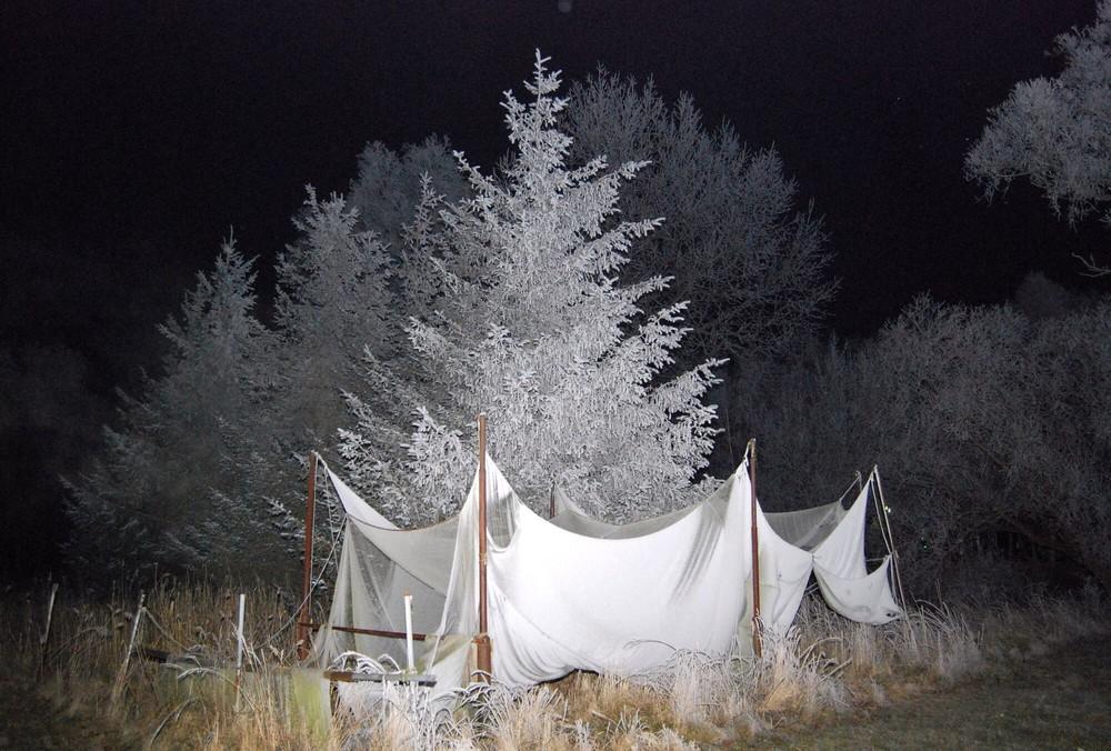 Fischernetze im Raureif bei Nacht