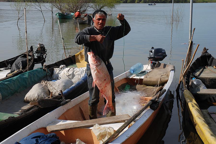 Fischers Glück