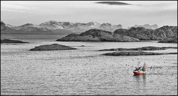 Fischfang auf den Lofoten