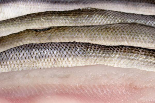 Fischfilets c