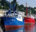 Fischkutter auf Rügen
