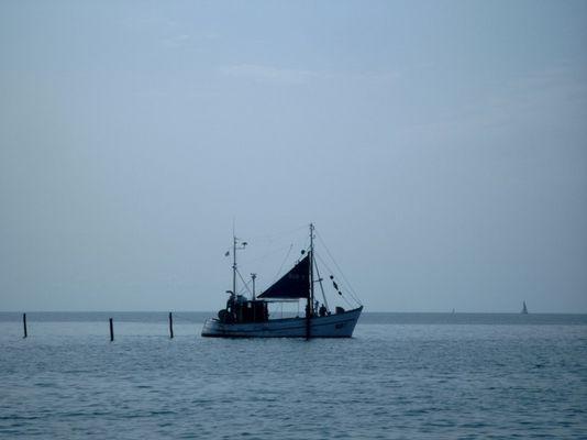 Fischkutter im Fehmarnsund