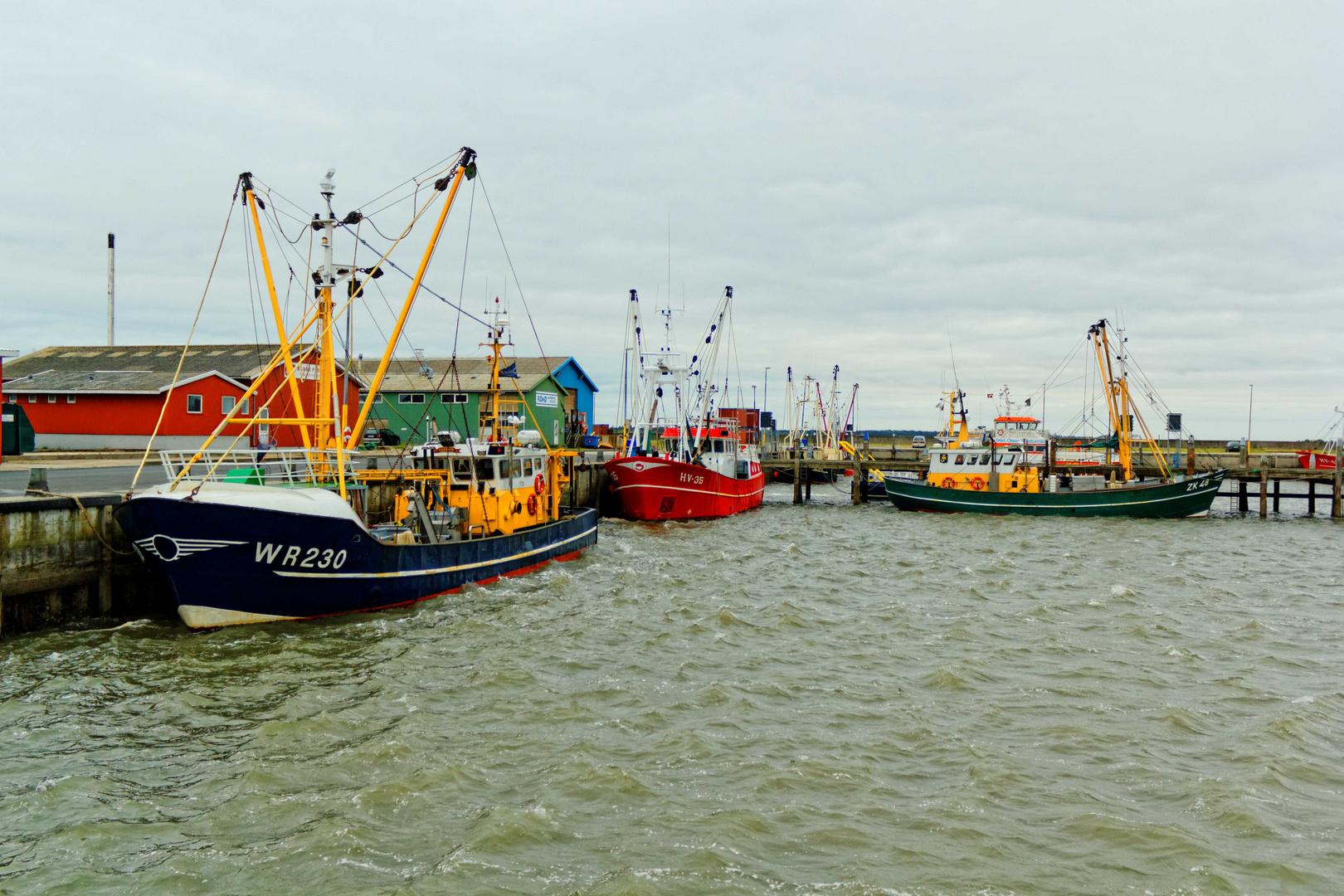 Fischkutter im Hafen von Havneby